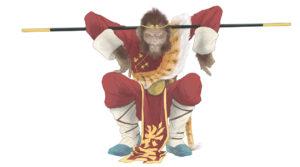 Monkey the Second Incarnation
